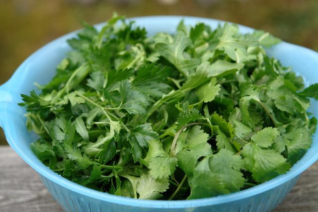 Hierbas para la salsa verde