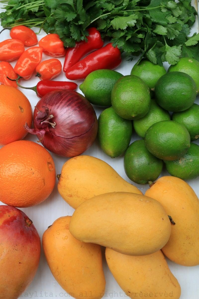 Ingredientes del ceviche de mango