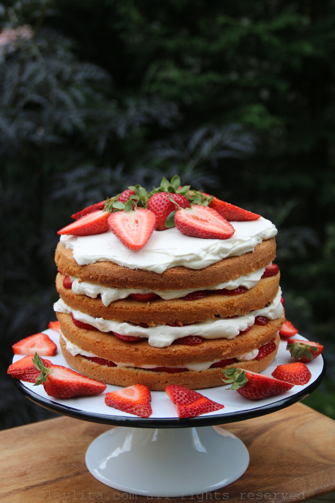 Pastel o bizcocho de vainilla con capas de fresas y crema