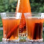Canelazo y naranjillazo