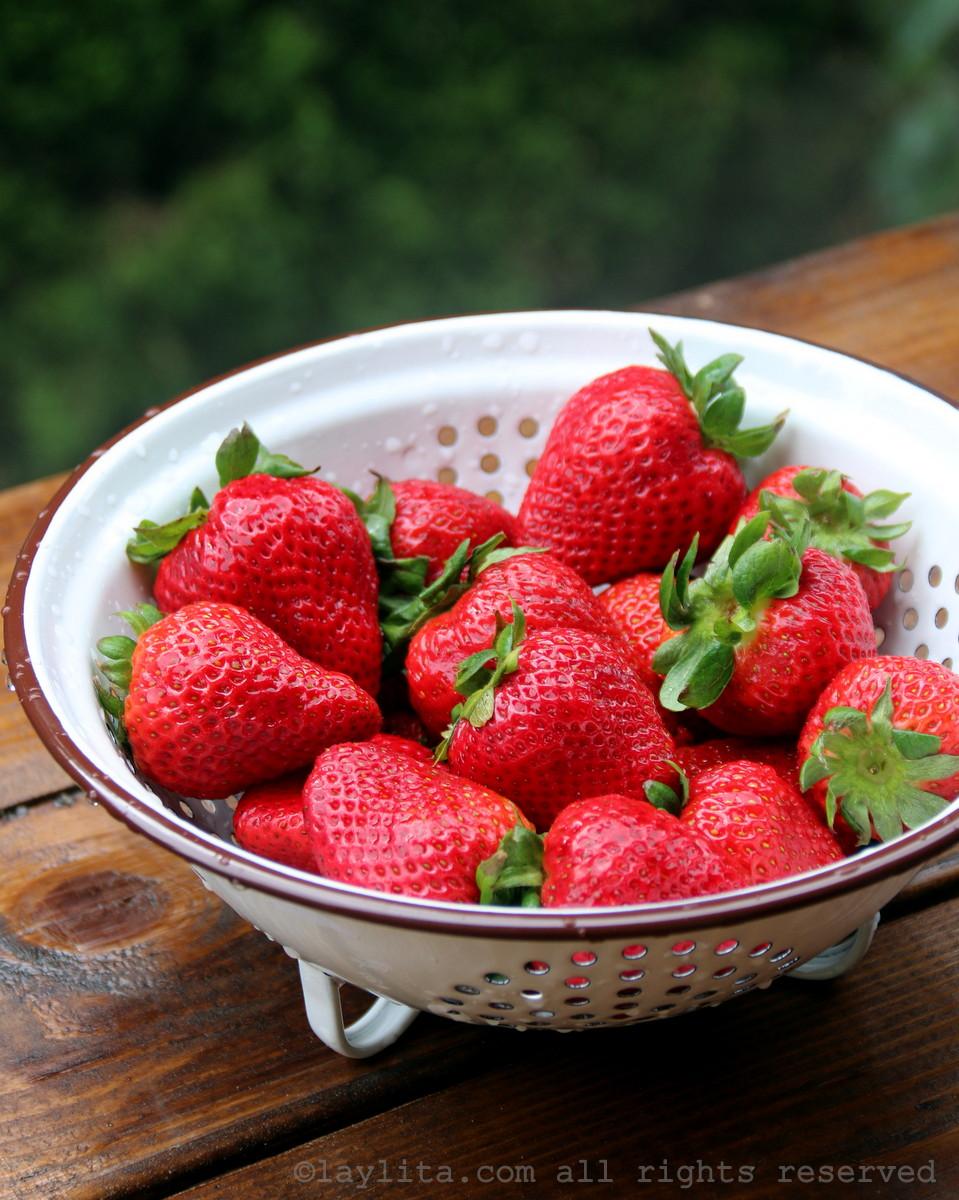 fraises fraiches pour recette de sorbets
