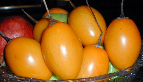 Tamarillos or tree tomatoes