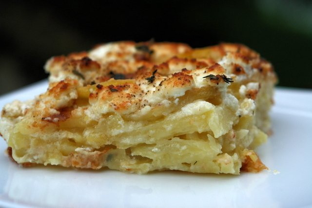 Potato gratin with goat cheese, garlic and herbs