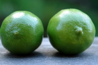 Limes for limeade