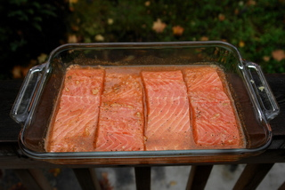 Marinate the salmon filets