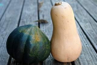 Acorn and butternut squash to make dulce de zapallo or candied squash