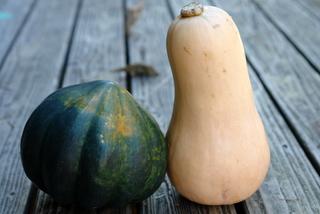 Acorn and butternut squash to make dulce de zapallo or candied squash