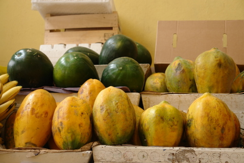 Papayas and watermelons
