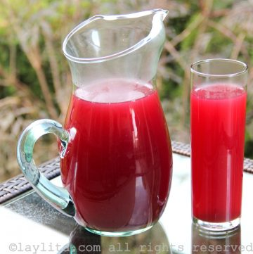 Ecuadorian horchata tea