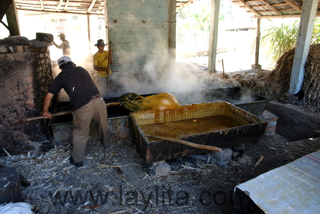Making panela at the sugarcane mill or trapiche