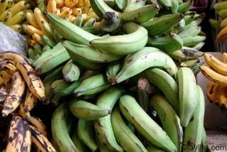 Green plantains to make majado de verde