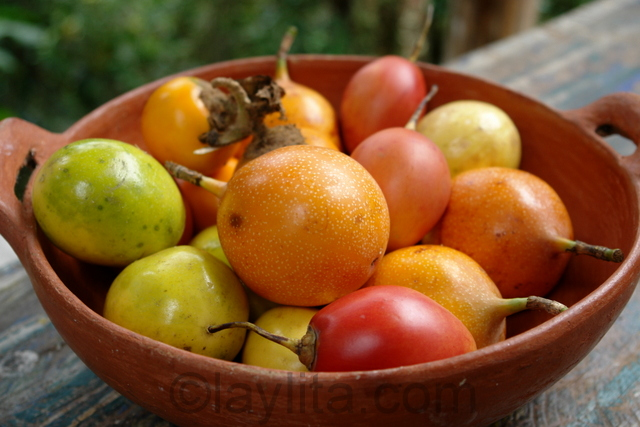 Ecuador fruits