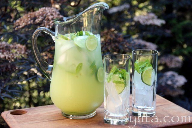 Serve the vodka lemonade or limeade garnished with lime slices and mint leaves