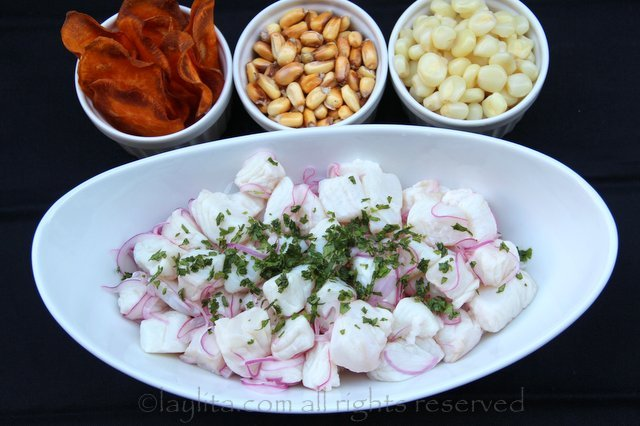 Cebiche or ceviche recipe