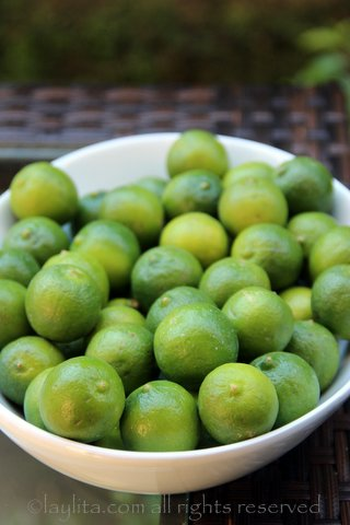 Key limes are the best for making ceviche in the US