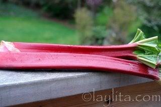 Rhubarb to make sauce or compote