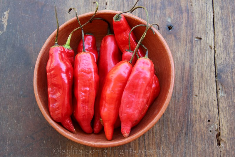 Ecuadorian red ajies or hot peppers