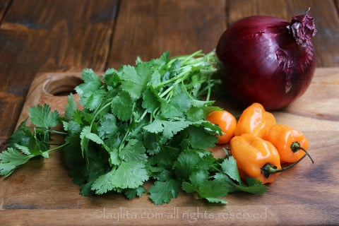 Cilantro, habanero and red onion for salsa