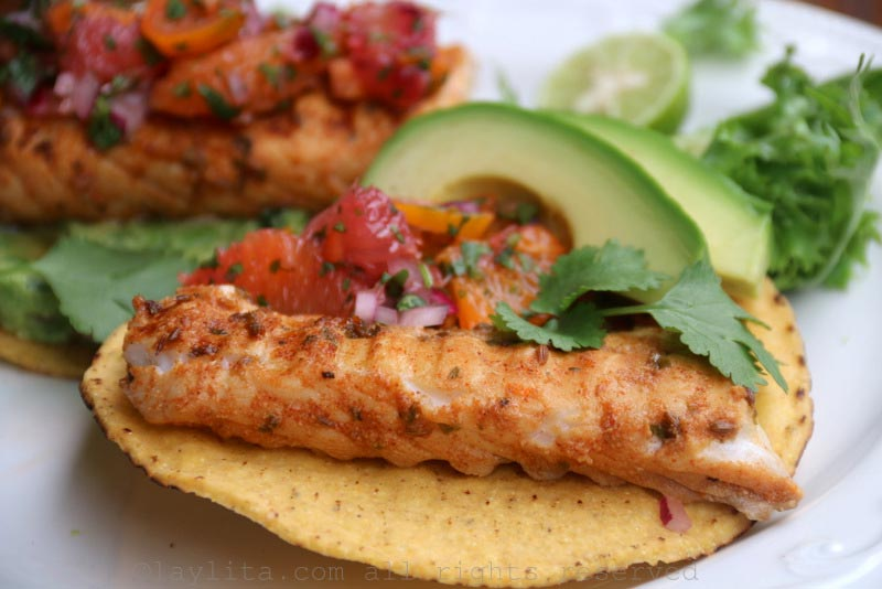 Citrus marinated grilled fish served on tostadas with avocado slices