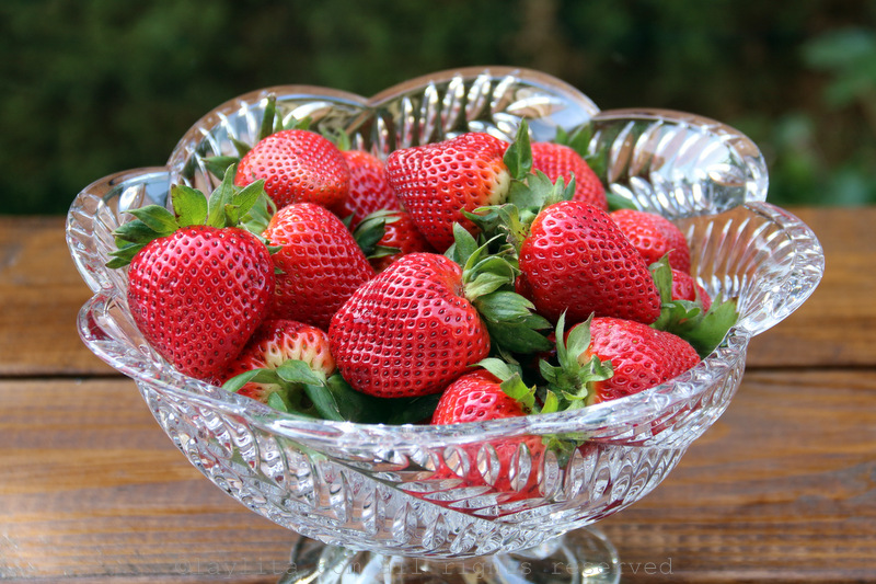 Fresh strawberries for a cake