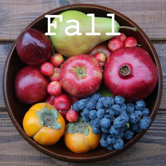 Autumn and fall recipes