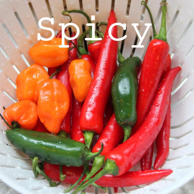 Spicy recipes