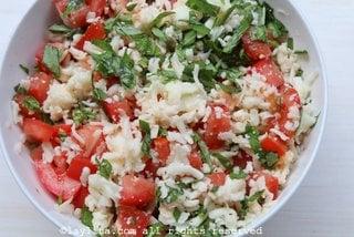 Tomato, grated mozzarella, and basil for the empanada filling