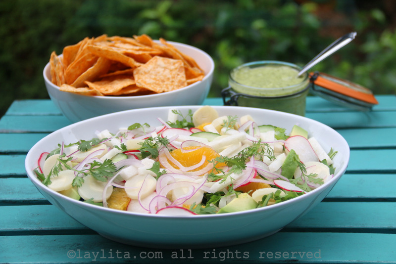 Latin salad with palmito, avocado, jicama, radish, cucumber, cilantro, and more
