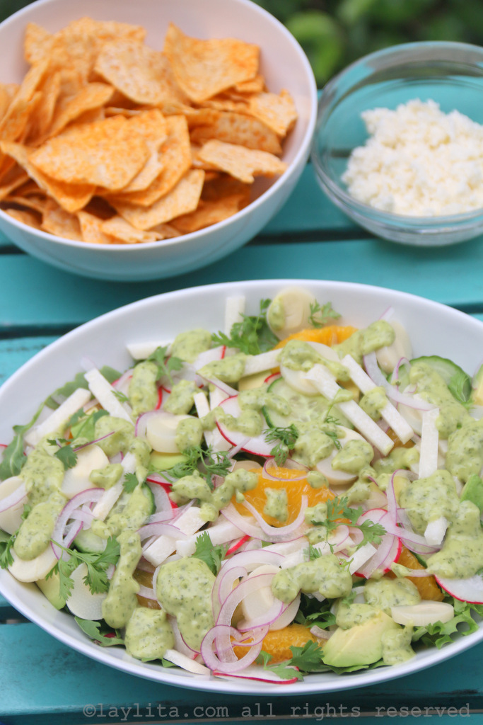 Mixed Latin salad with avocado, jicama, hearts of palms