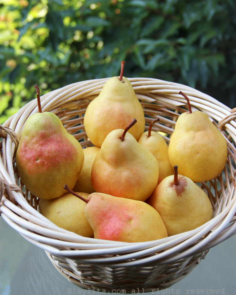 Ripe pears to make spiced caramelized pears