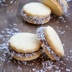 Alfajores cookies filled with dulce de leche