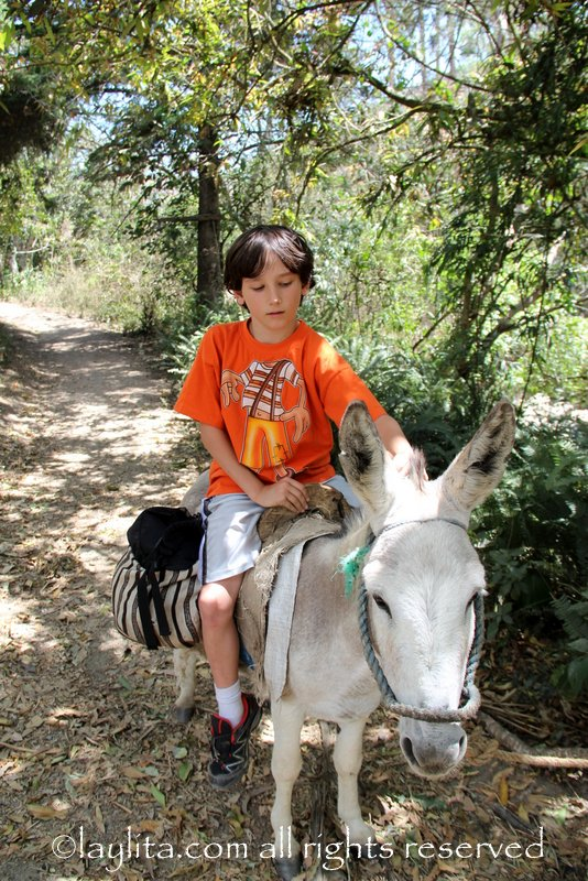 Riding a donkey in Vilcabamba
