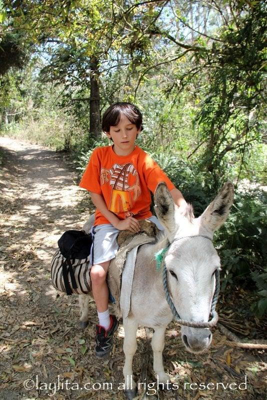 Riding a donkey in Vilcabamba