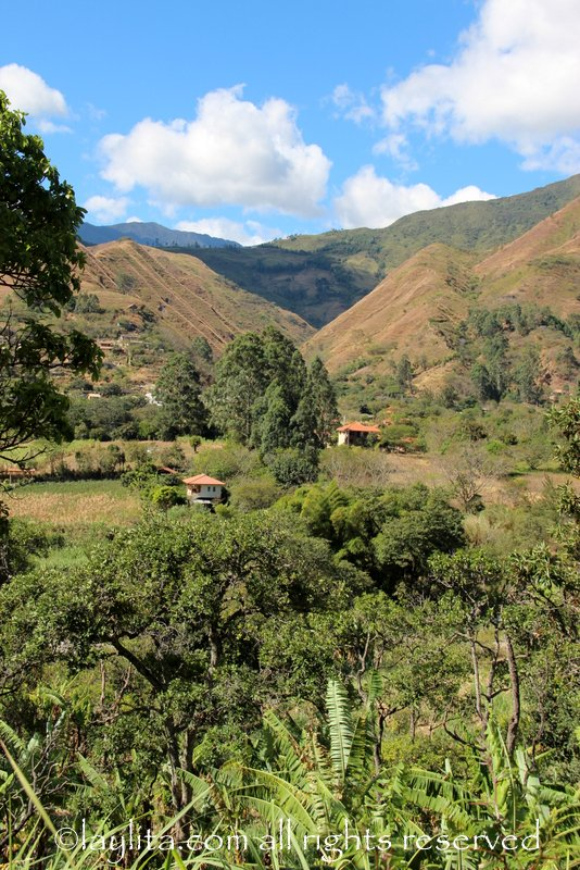 View of Yamburara in Vilcabamba