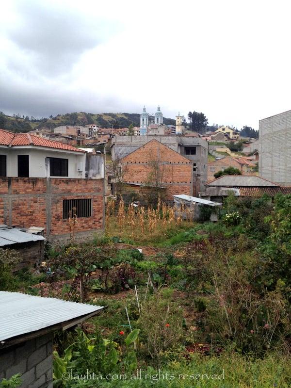Small garden or huerto and the town's church