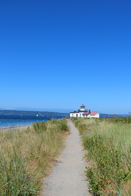 Discovery Park is a great place to go on a sunny day in Seattle