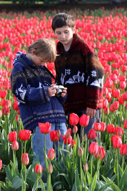Kids at the tulip festival in Mt Vernon