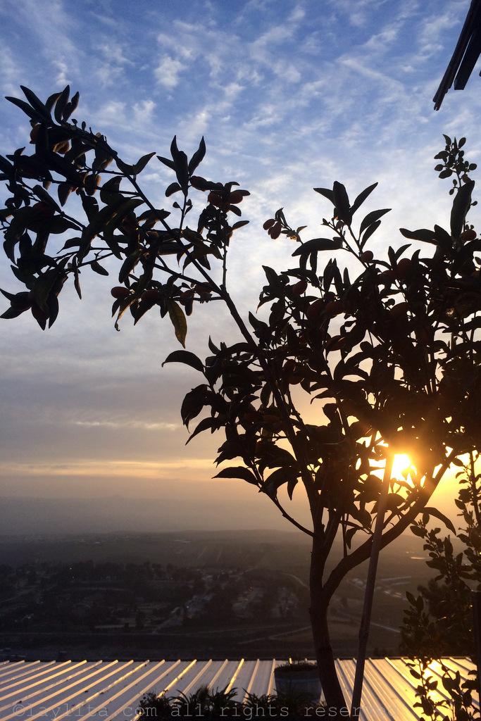 Sunrise in Rosh Pina